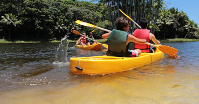 Verão Eco Parque Sauípe - Foto: Divulgação